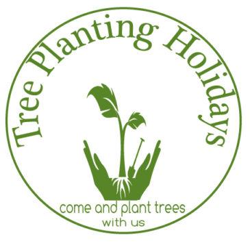 Tree Planting Holidays